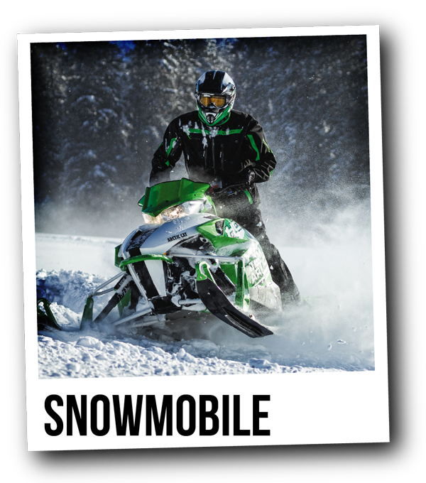 Shop Arctic Cat Snowmobile ATV